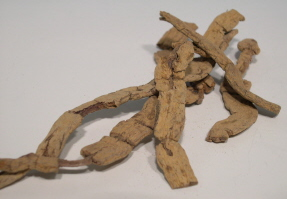 Chinese Herbs from East Earth Trade Winds